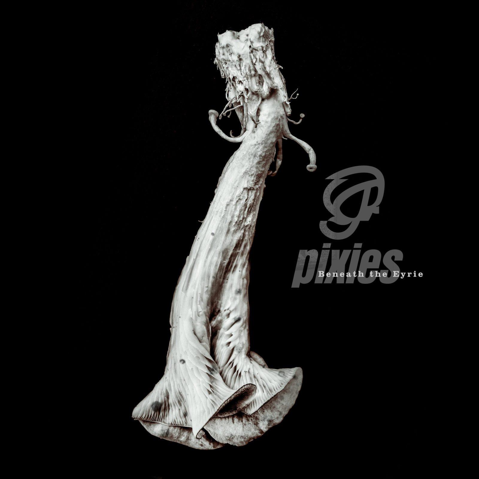 Tutto quello che devi sapere su Pixies - Beneath the Eyeire